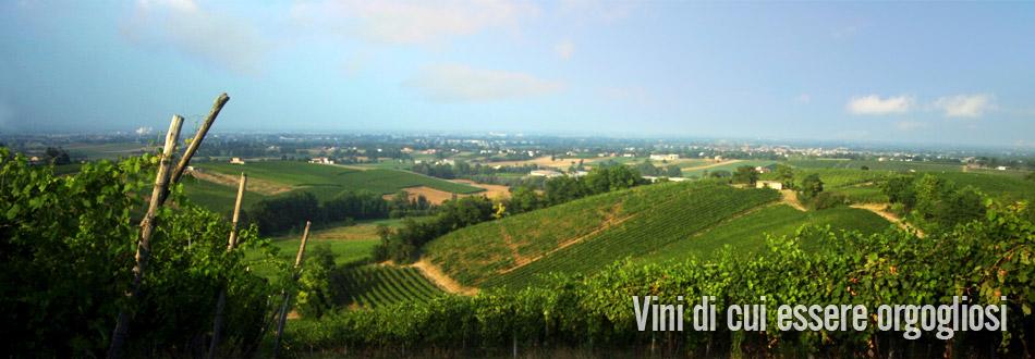 azienda vinicola fratelli piacentini | panorama