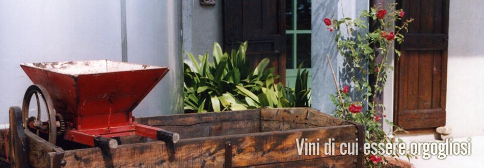 azienda vinicola fratelli piacentini | l'azienda
