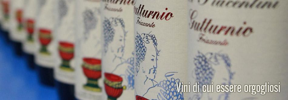 azienda vinicola fratelli piacentini | il Gutturnio